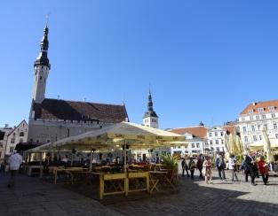 Der Rathausplatz im Frühsommer